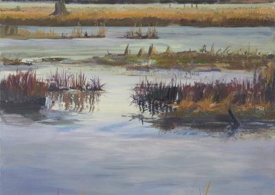 Cowichan Estuary #4