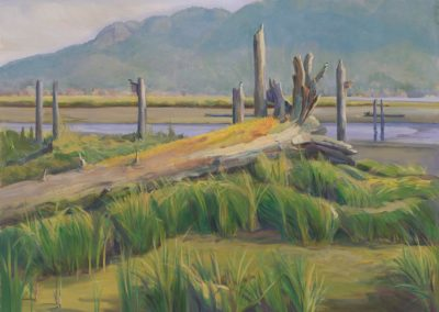 May Morning-The Cowichan Bay Estuary