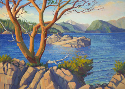 The Arbutus Tree on Ragged Island
